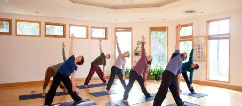 Yasodhara Hatha Yoga